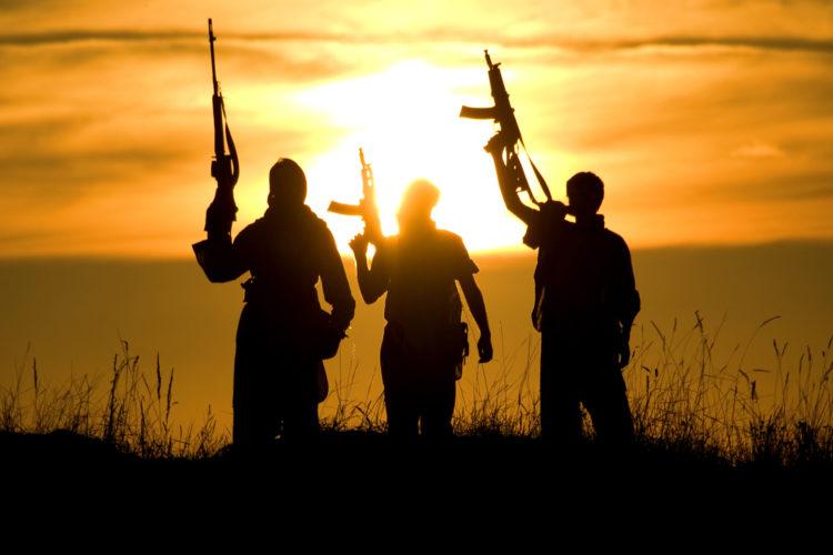 Europol y la UE asestaron un duro golpe al Daesh en 2019