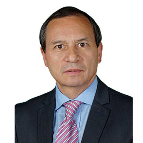 Henry Torres Figueredo Clúster de Vigilancia y Seguridad Privada Colombia