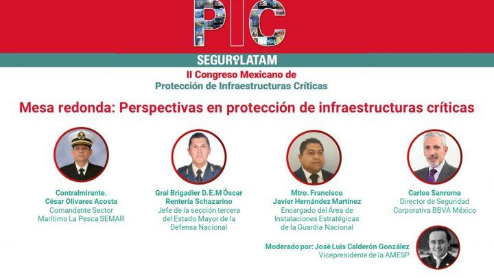 Mesa redonda PIC México 2020