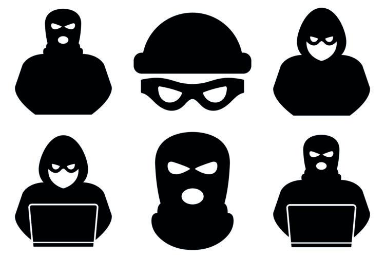 delincuencia física y virtual