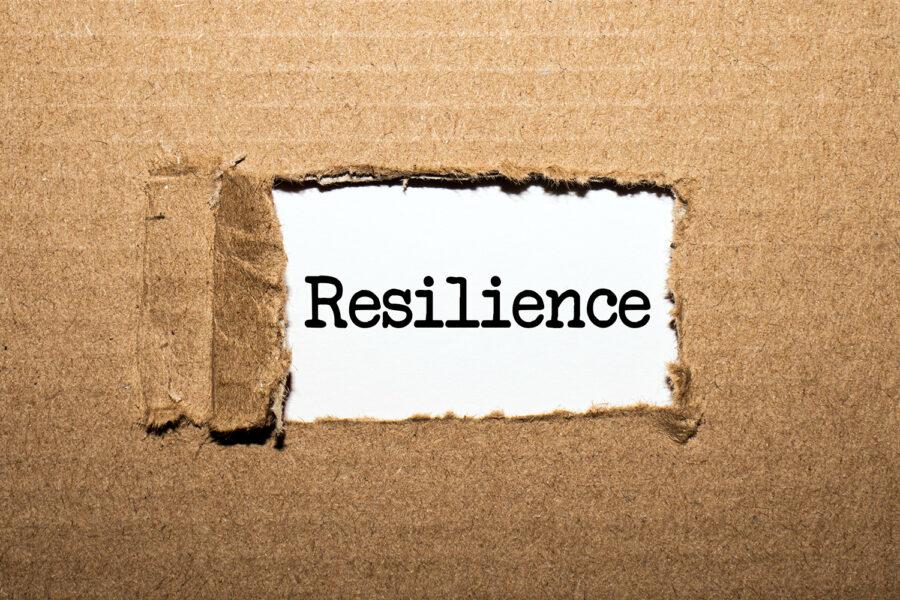 concepto de resiliencia