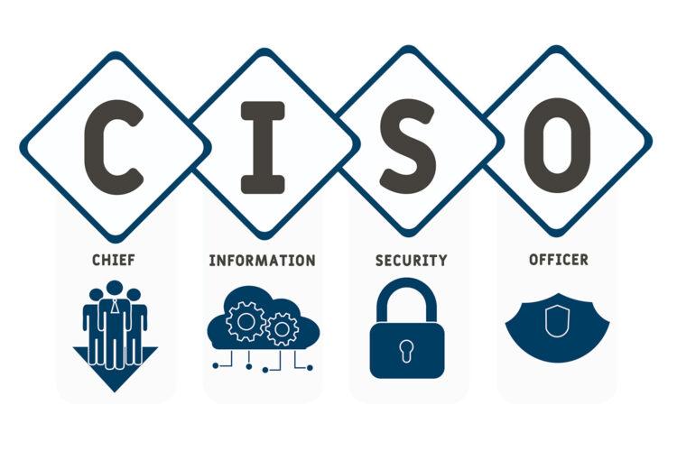 director de Seguridad de la Información CISO